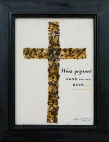 Omslag Wees gegroet - Hans van der Beek