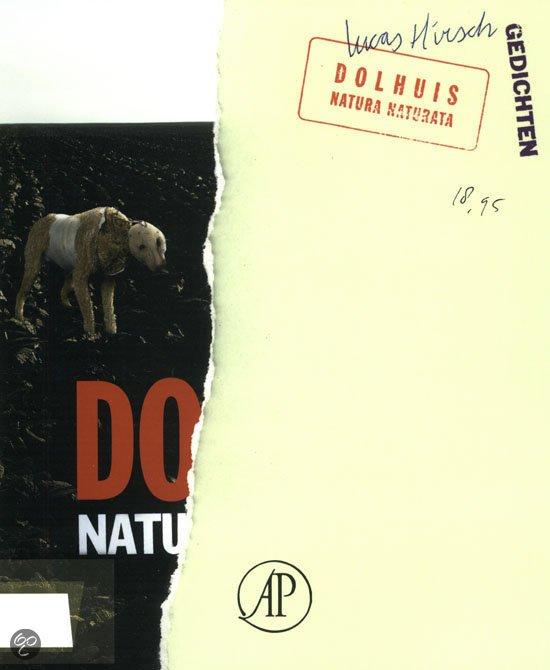 Omslag Dolhuis - Lucas Hirsch
