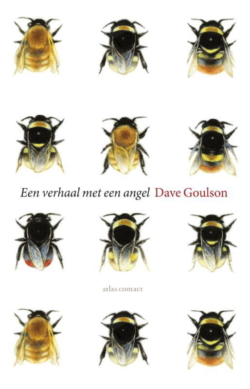 Omslag Een verhaal met een angel  -  Dave Goulson