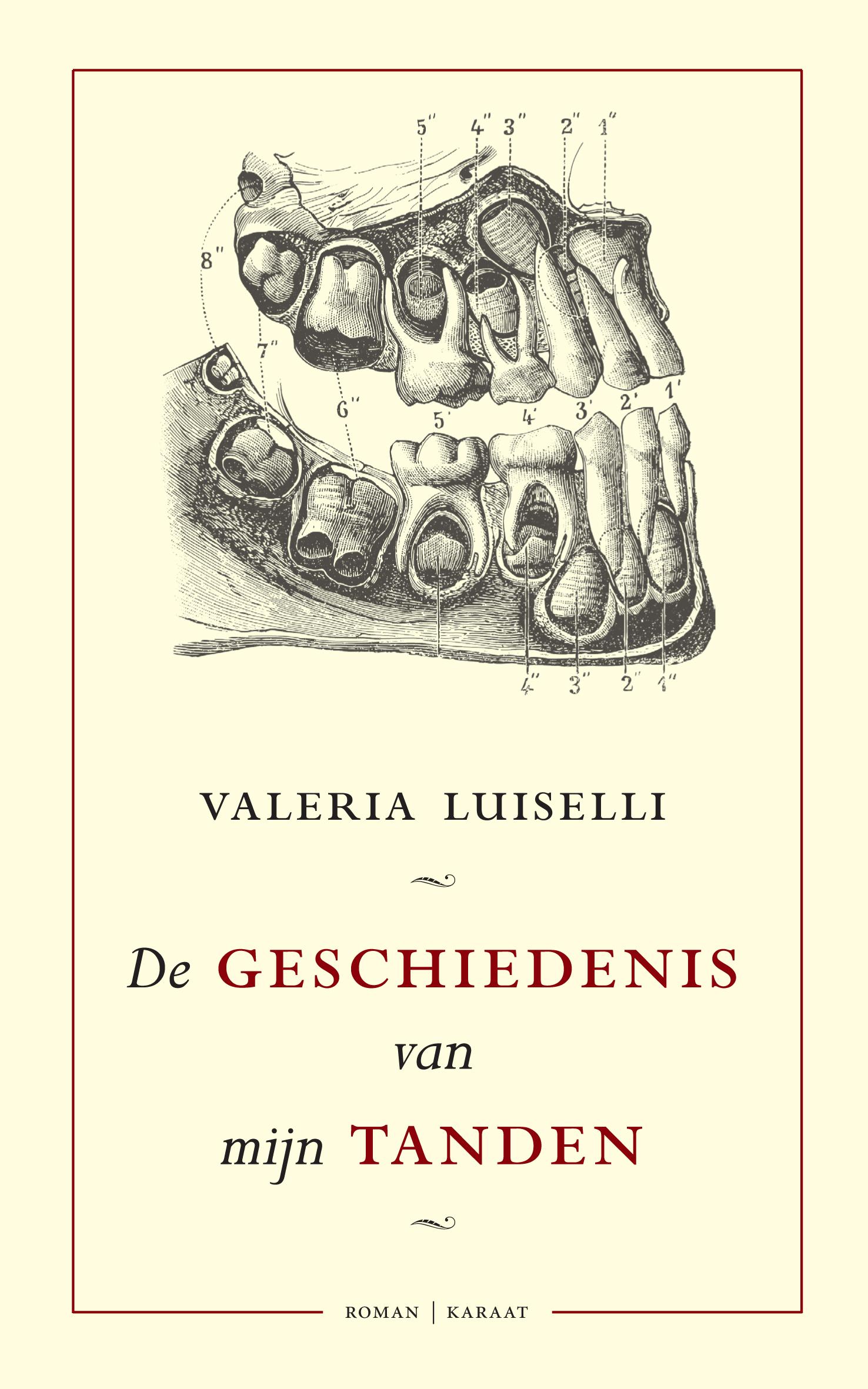 Omslag De geschiedenis van mijn tanden - Valeria Luiselli