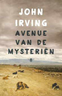 Omslag John Irving - Avenue van Mysteriën